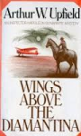 Wings Above Diamantina
