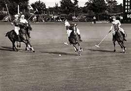 A game of polo anyone?